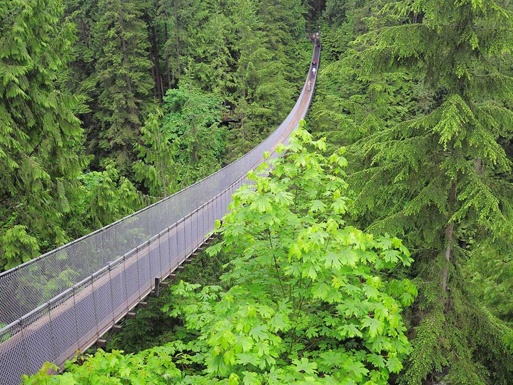 Capilano Suspension Bridge and Grouse Mountain