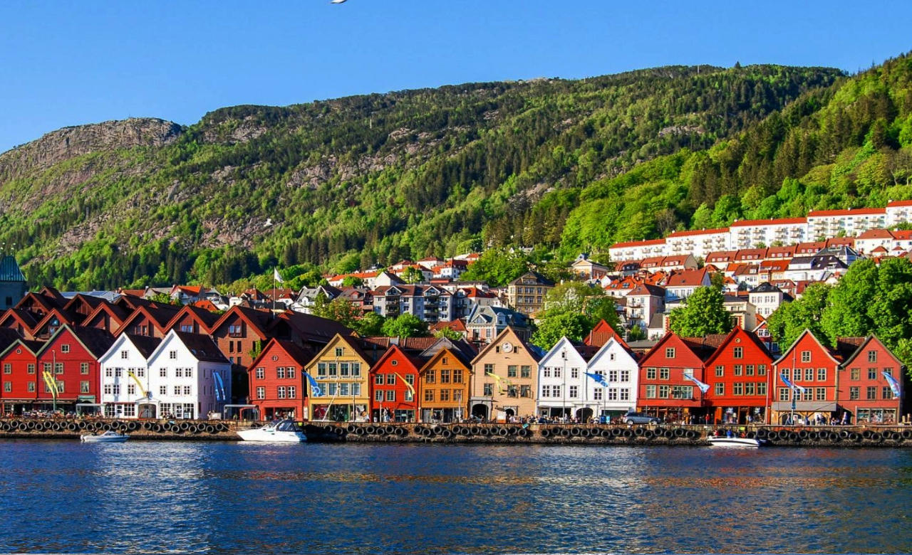 Bergen Shore Excursion - Bergen Walking Tour
