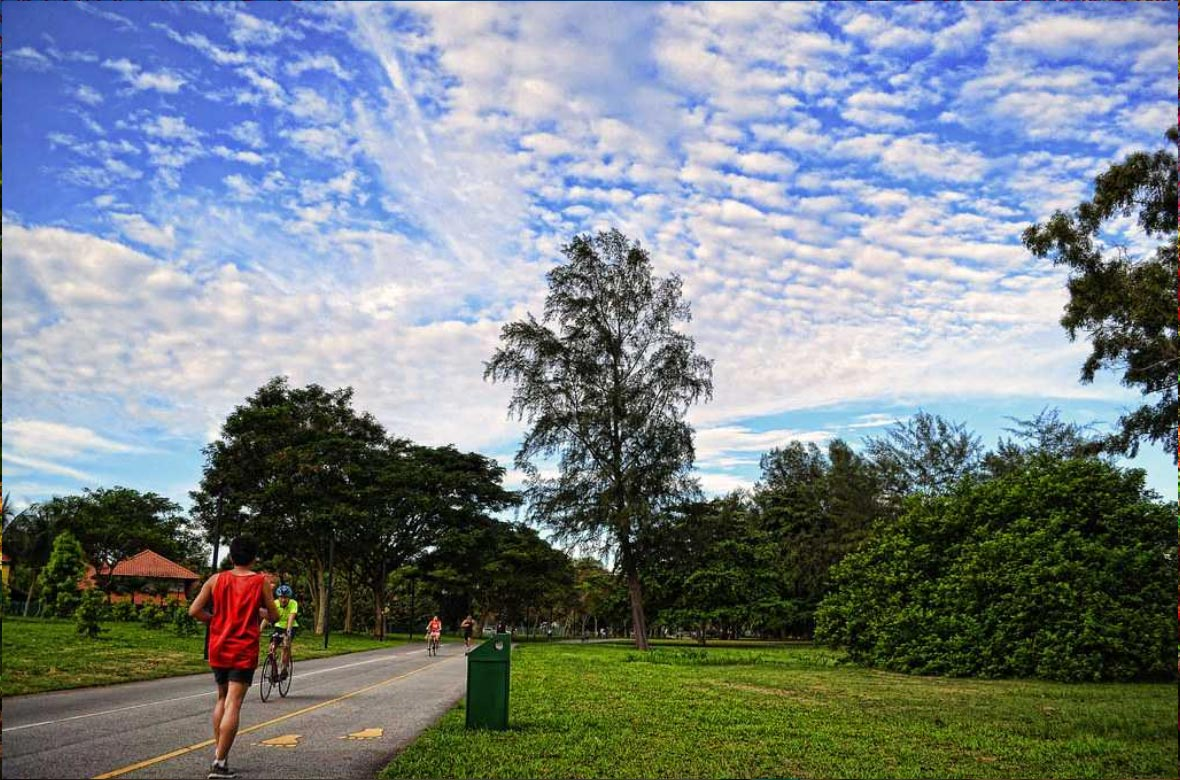 Get sporty at East Coast Park