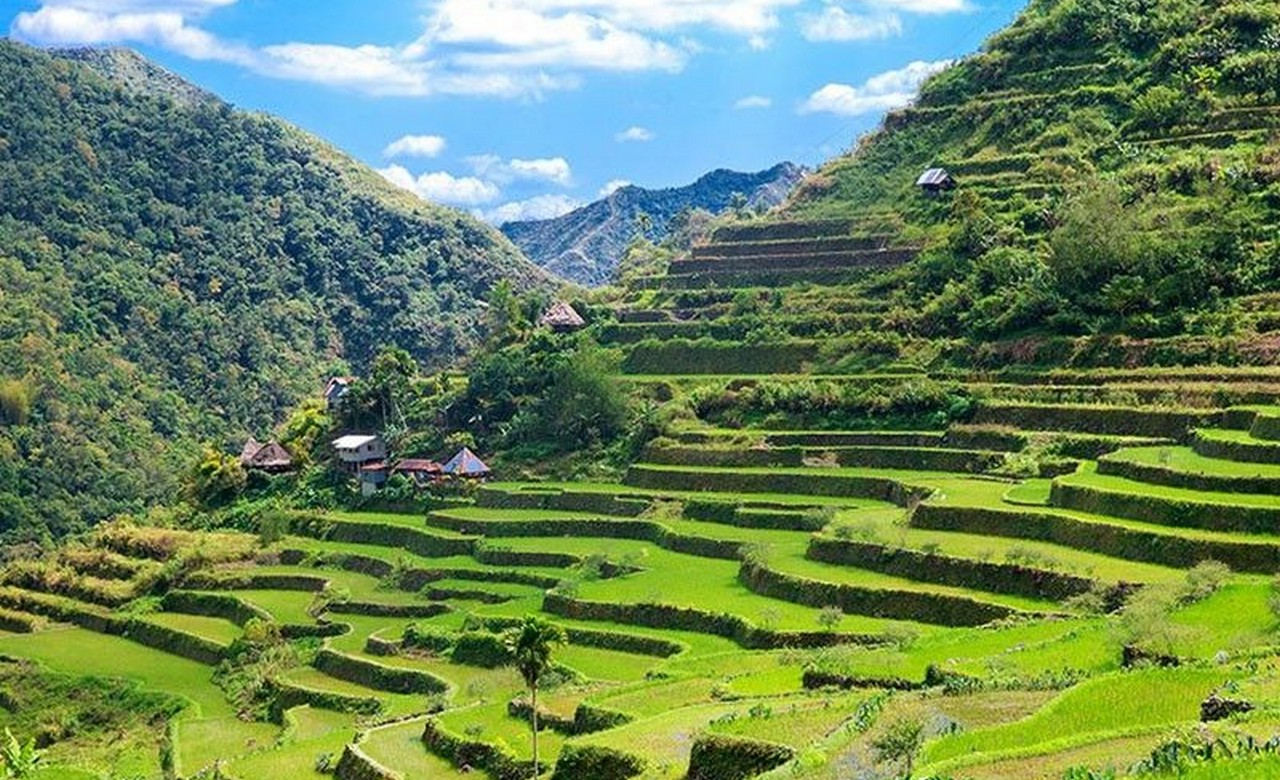 Philip-Rice Terraces