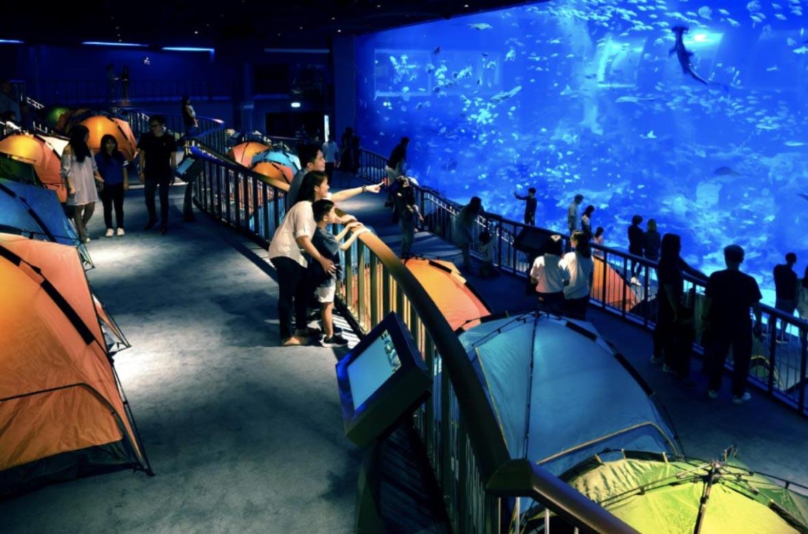 Marine Park SEA Aquarium