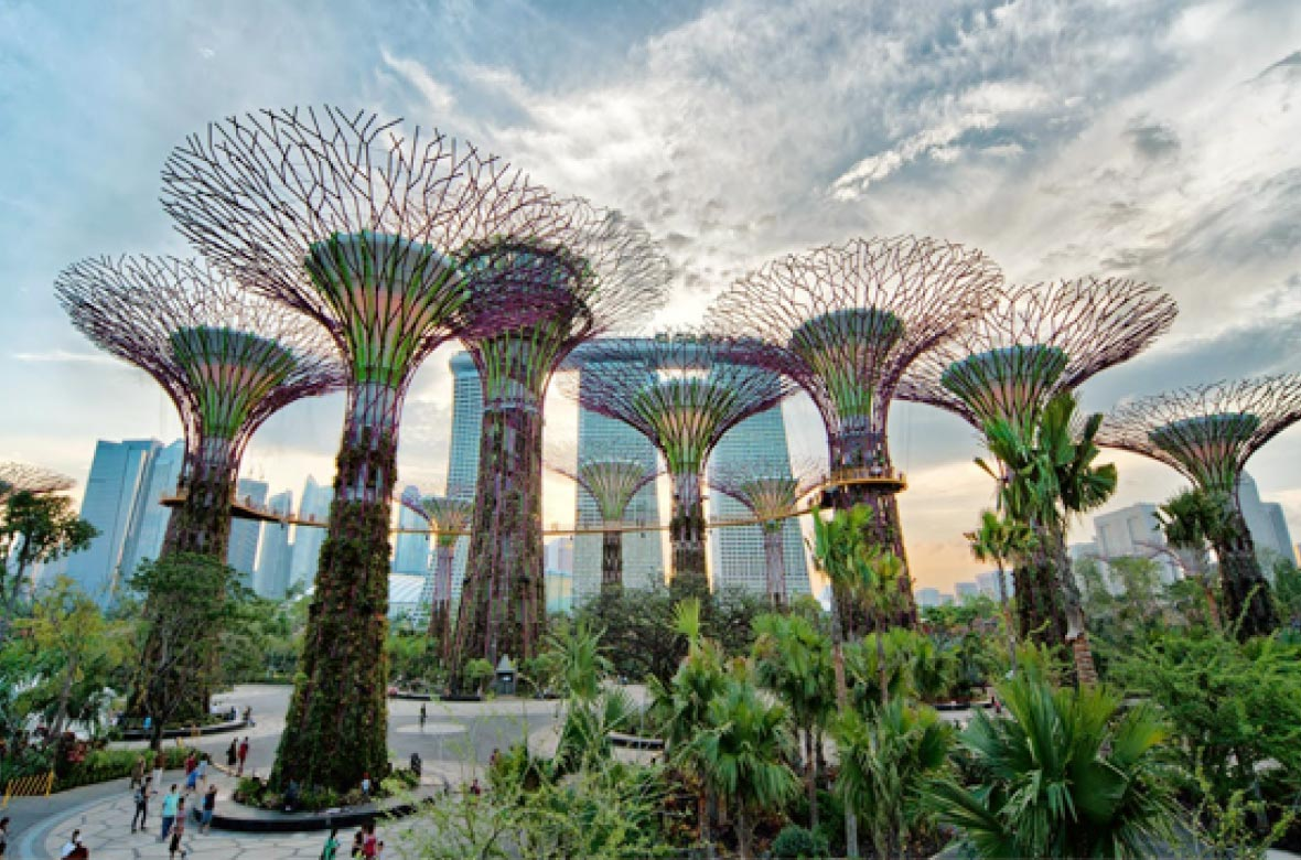 Take a stroll around the Gardens by the Bay