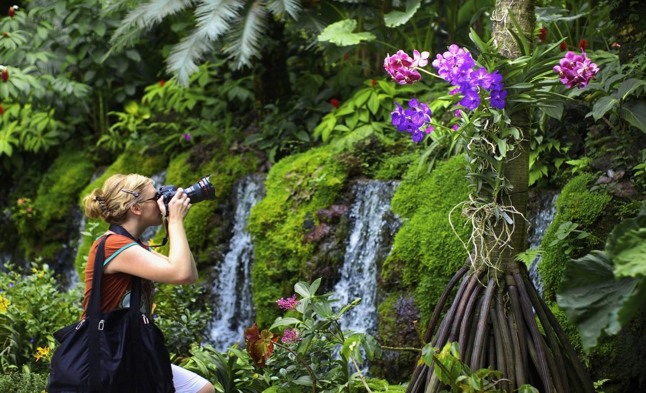 Stroll around Singapore Botanic Gardens