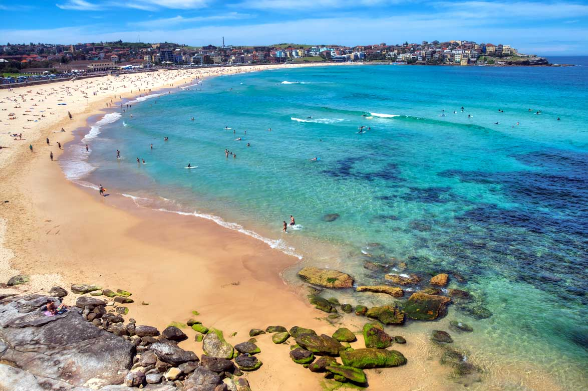 Half Day City Tour with Bondi Beach Tour
