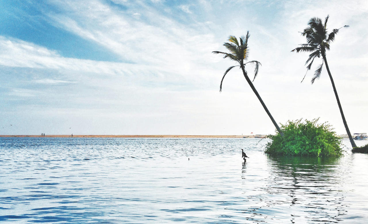 Thrill yourself with water activities at Kumarakom beach