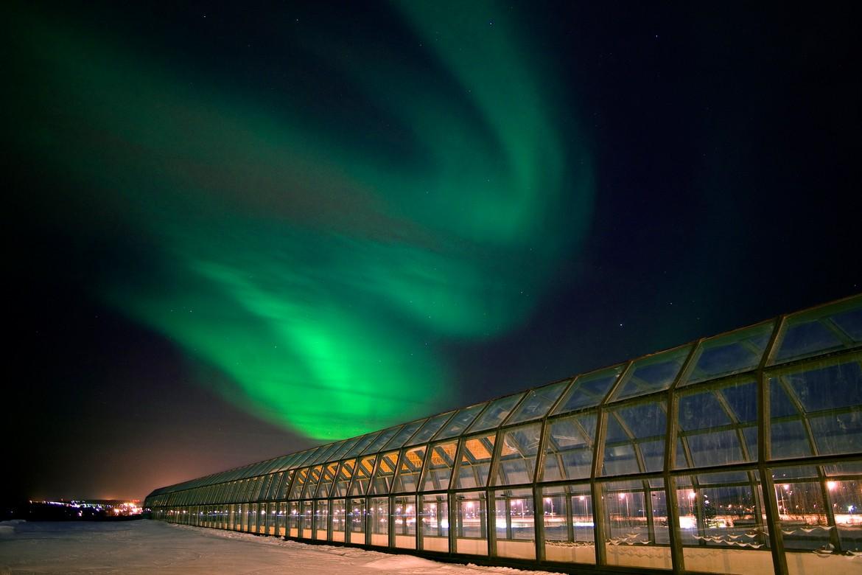Arktikum and Northern Lights