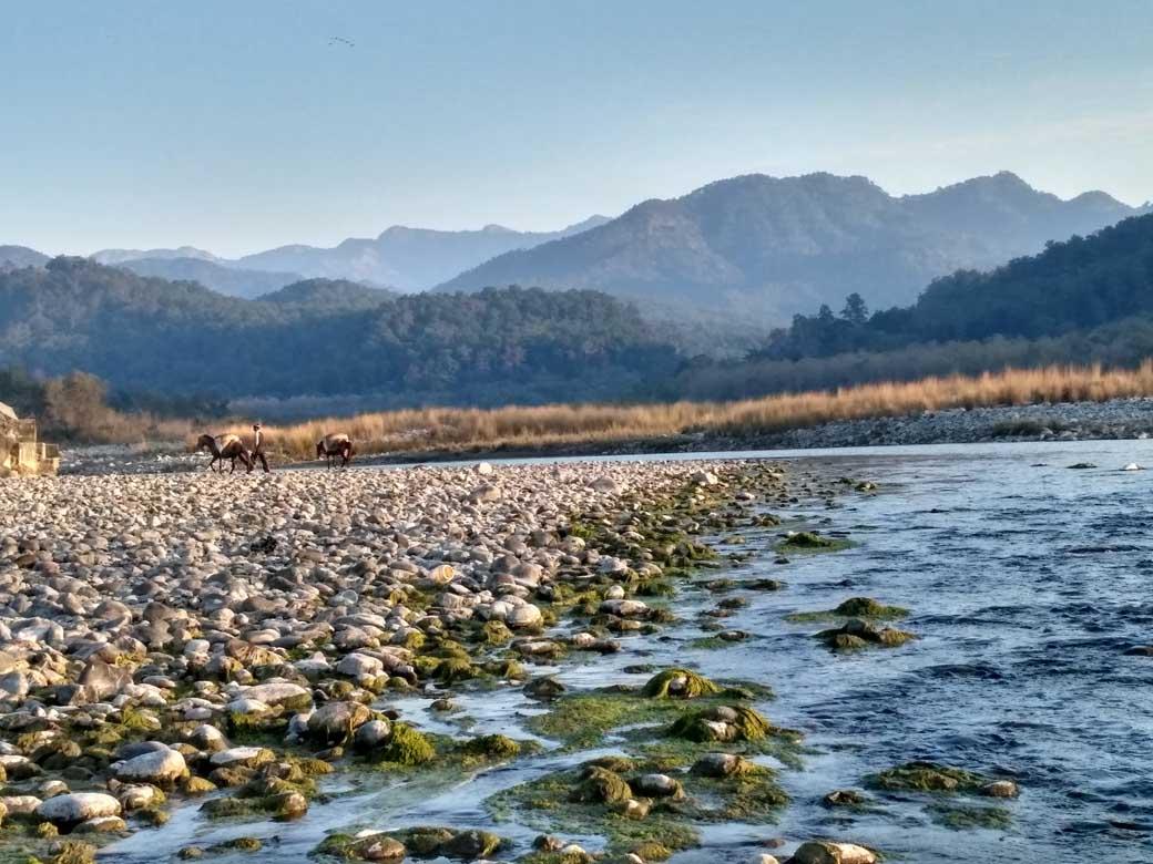 kosi river view