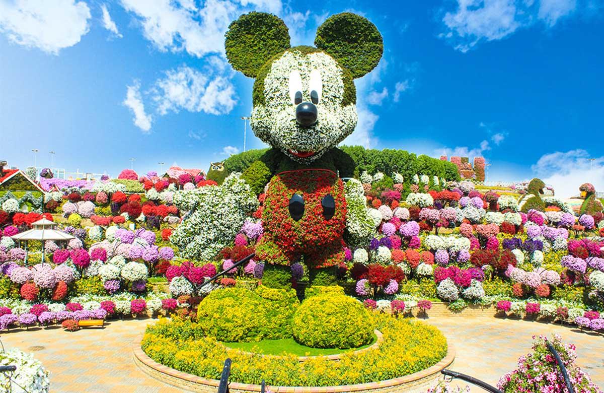 Miracal Garden