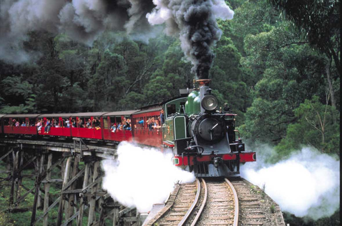 Puffing Billy with Wildlife