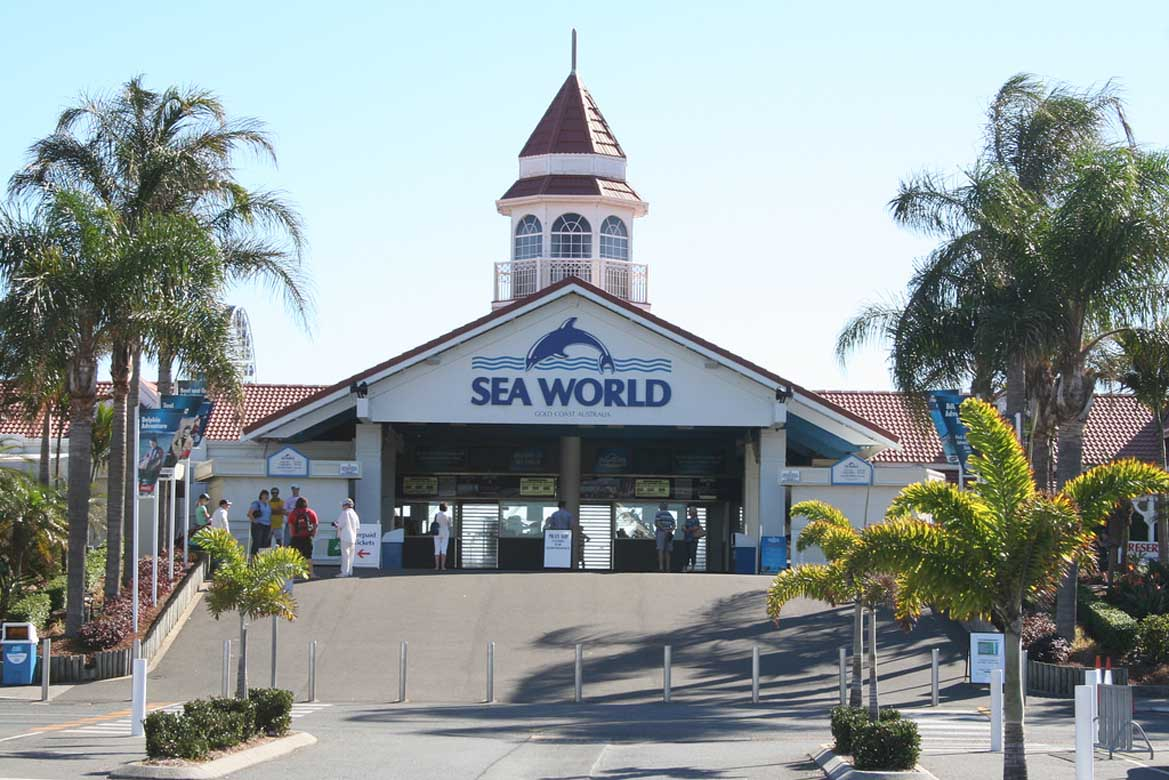 Seaworld 3