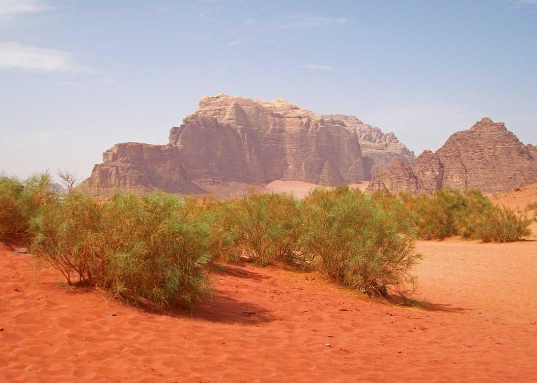 Wadi Rum3