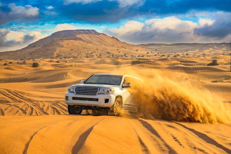 Desert Sfari